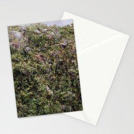 Flora Andina Stationery Cards