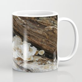 Where The Fairies Live Coffee Mug