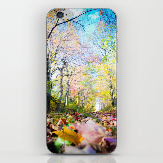 Amongst the Leaves iPhone & iPod Skin