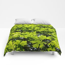 Sun-Dappled Forest in the Spring Comforters