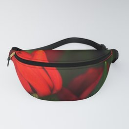 Tulips for mother Fanny Pack
