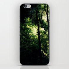 Inside the Cave iPhone & iPod Skin