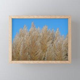 Pampas grass Framed Mini Art Print