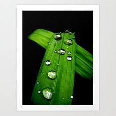 November Rain Art Print