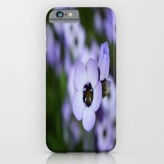 Soft Beauty Slim Case iPhone 6s