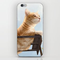 My Neighbour's Cat iPhone & iPod Skin