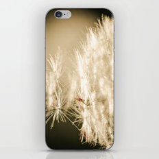 Bijoux iPhone & iPod Skin