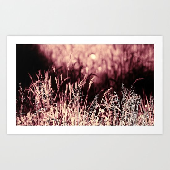 How much greener the grass is with those rose tinted glasses...  Art Print