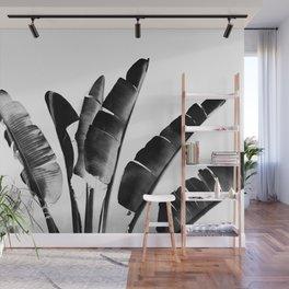 Traveler palm - bw Wall Mural