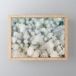Exceptional succulents Framed Mini Art Print