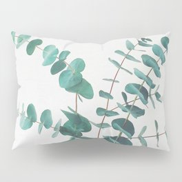 Eucalyptus II Pillow Sham