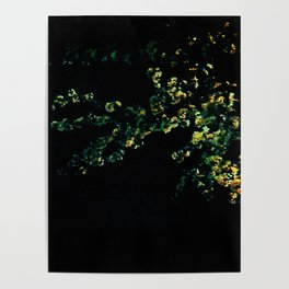abstract flower bouquet in the moonlight Poster