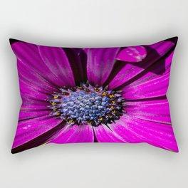 Purple Osteospermum Flower Rectangular Pillow