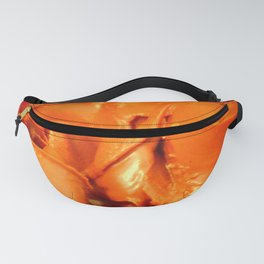 Closely View On Something Everybody Knows Fanny Pack