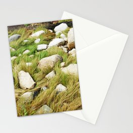 Maine Seagrass Stationery Cards