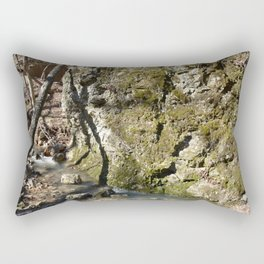 Alone in Secret Hollow with the Caves, Cascades, and Critters, No. 11 of 21 Rectangular Pillow