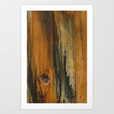 Abstractions Series 001 Art Print