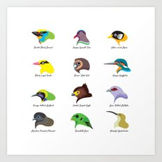 Montane Birds Series 2 Art Print