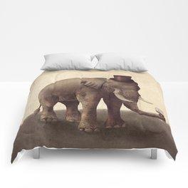 A Fine Vintage Comforters