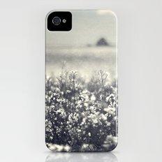 Canola Glow iPhone (4, 4s) Slim Case