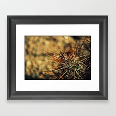 Desert's Defence Framed Art Print