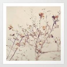 Winter. Magnolia Tree Art Print