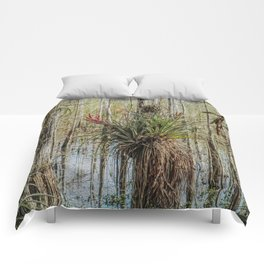 Unexpected Beauty Comforters