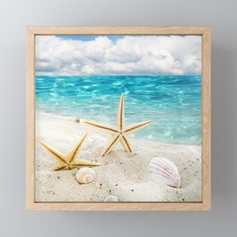 seashell and sea Framed Mini Art Print