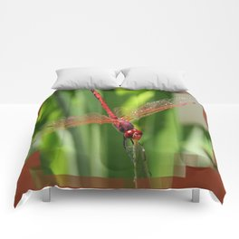 Red Skimmer or Firecracker Dragonfly Closeup Comforters