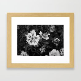 Abstract Flowers Black and white Framed Art Print
