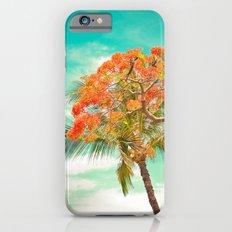 Summery Trees in Hawaii iPhone 6s Slim Case