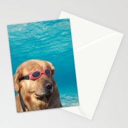 Swimmer Dog Stationery Cards