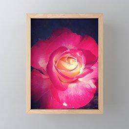The Rose Framed Mini Art Print