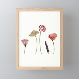 5 Spring Flowers. Framed Mini Art Print