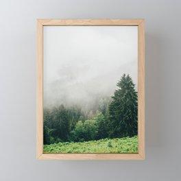 Fog Covered Forest Framed Mini Art Print