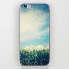 Corn Husker iPhone & iPod Skin