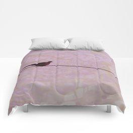 Perch Comforters