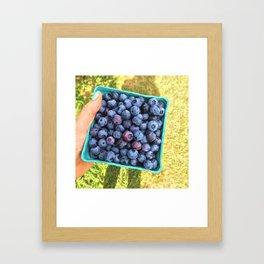 Berry Picking Framed Art Print