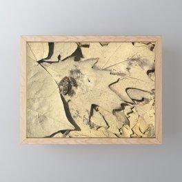 Tiny frog in leafy pond Framed Mini Art Print