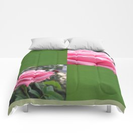 Pink Roses in Anzures 6 Blank Q5F0 Comforters