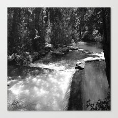 Tennessee Waterfall Black and White Canvas Print