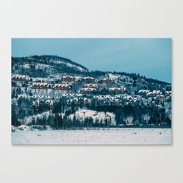 Winter Night Canvas Print