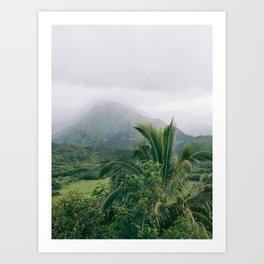 Hanalei Valley, Kauai Hawaii, Tropical Nature, Landscape Photography Art Print