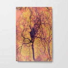 Montauk Fall Forest Metal Print