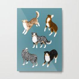 Australian Shepherd Pattern (Teal Background) Metal Print
