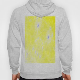 the face of the sun Hoody