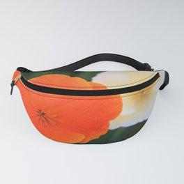 Orange Cream Fanny Pack