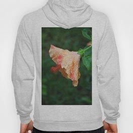 A Showered Flower Hoody