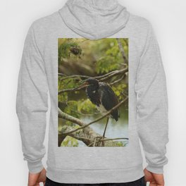 Tricolored At Rest Hoody