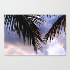 tropical.  Canvas Print